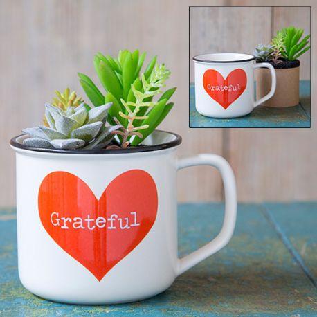 2in1 Mug Succulent Gratitude