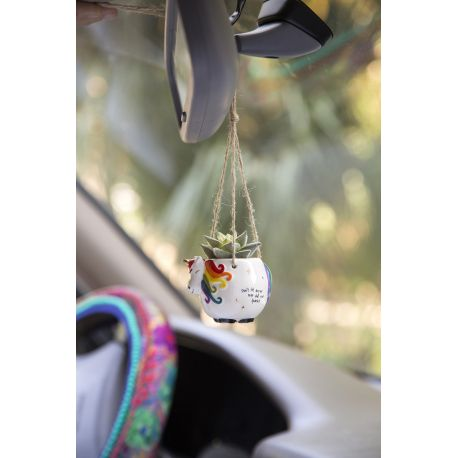 Mini Hanging Succulent Unicorn