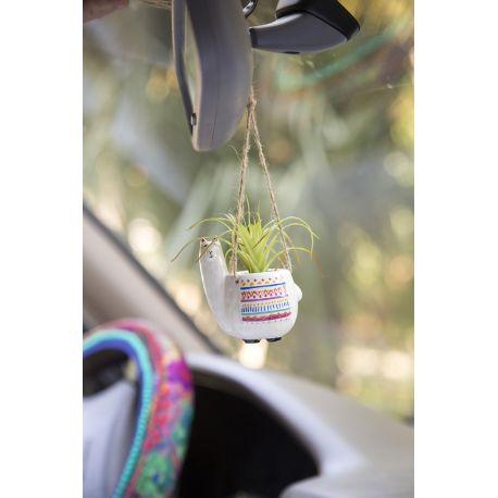 Mini Hanging Succulent Llama